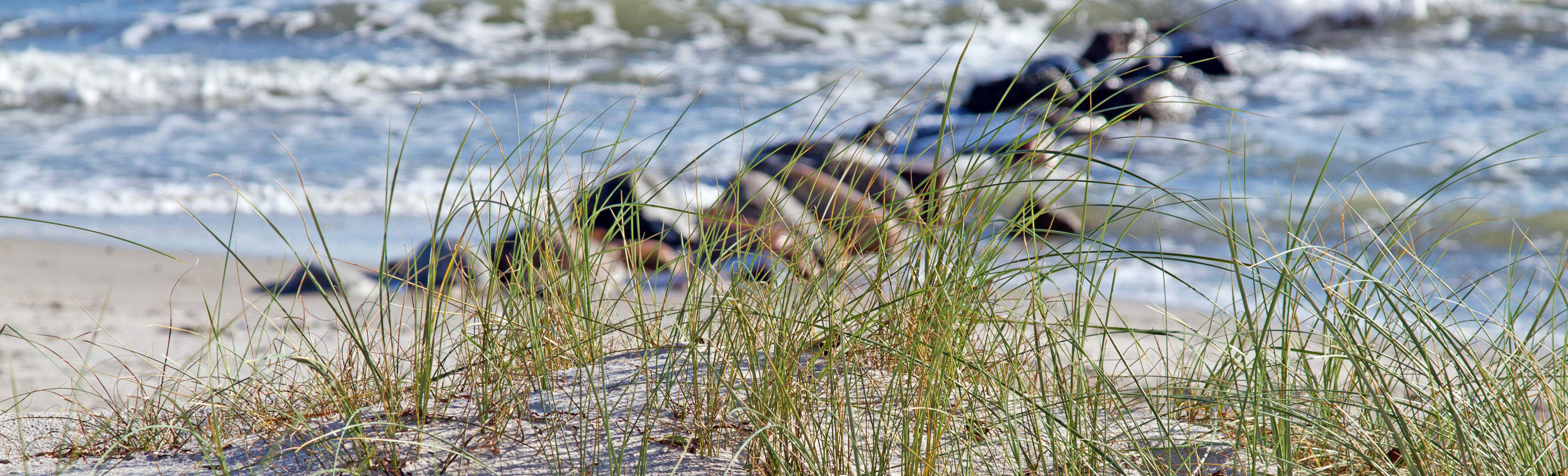 Header Strand 1082 Kollenberg RE bearb 2800x850px